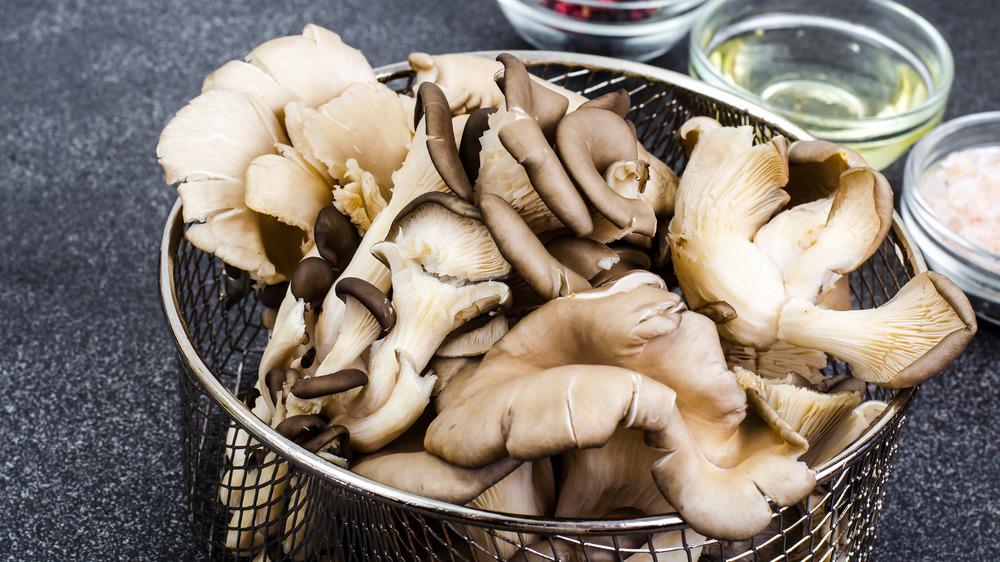 oysters mushrooms