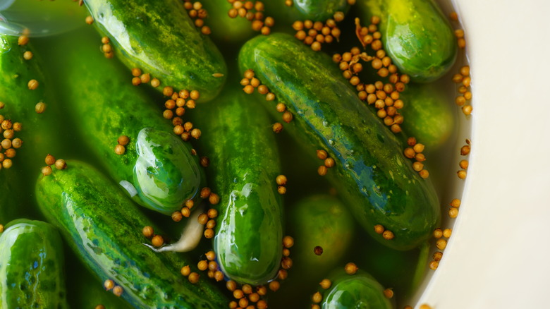 Half-sour pickles floating in brine and seeds
