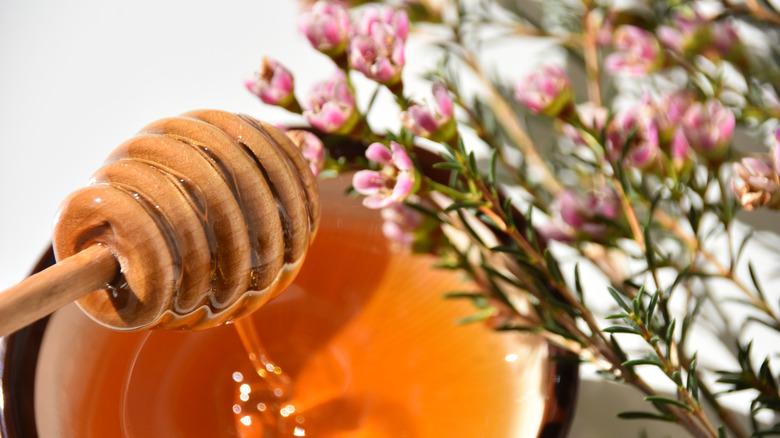 Manuka Honey with flowers
