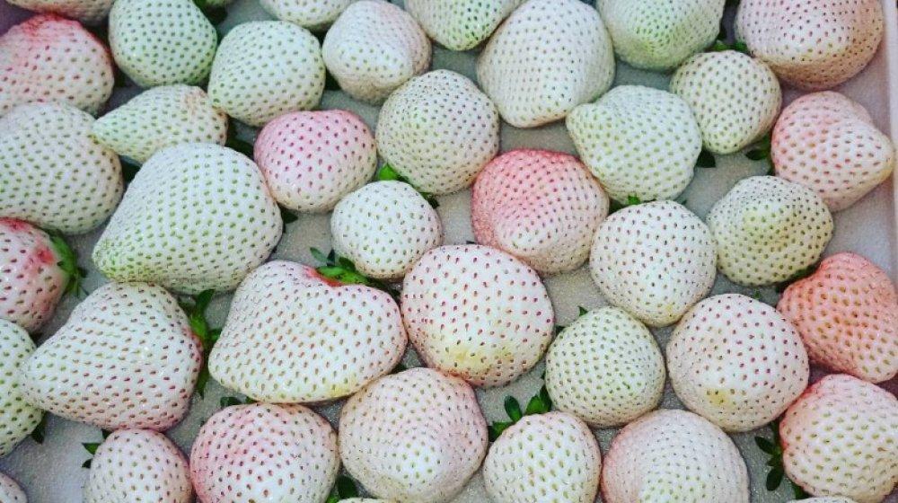 white strawberries