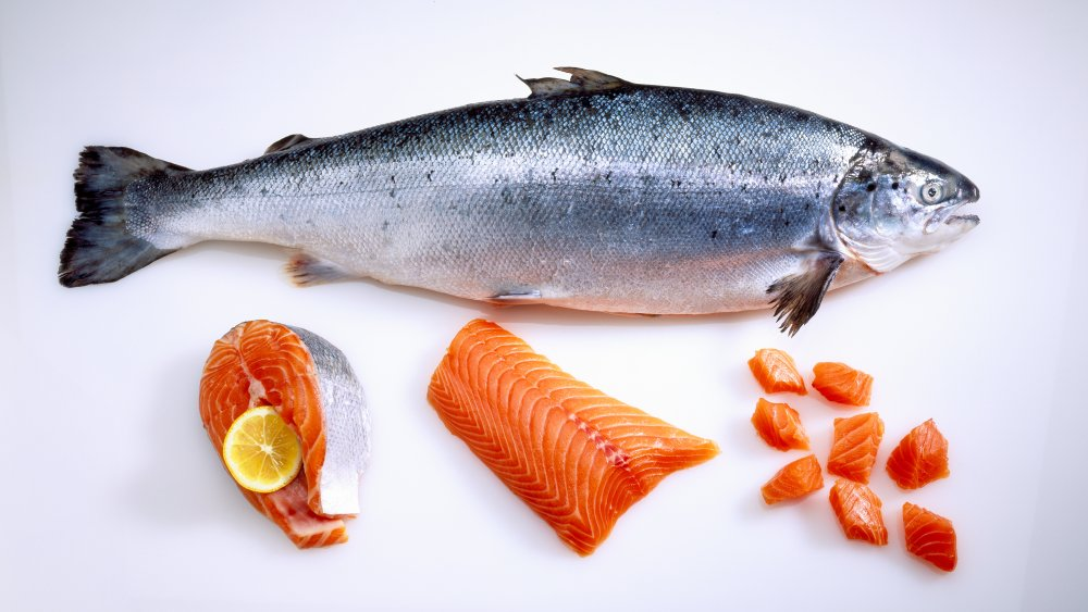 Raw fish in various forms