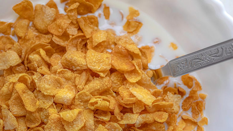 A bowl of cornflakes and a metal spoon