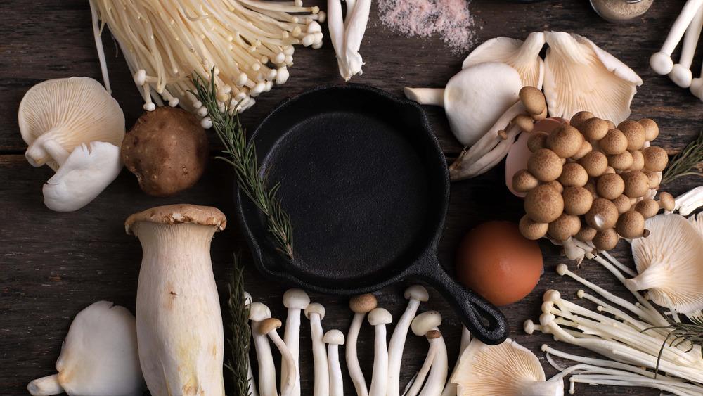 assortment of mushroom types