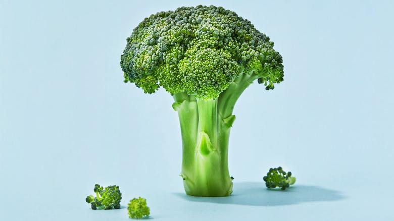 Broccoli stalk