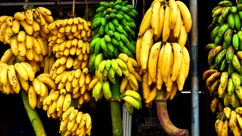 Assorted bananas hanging in India