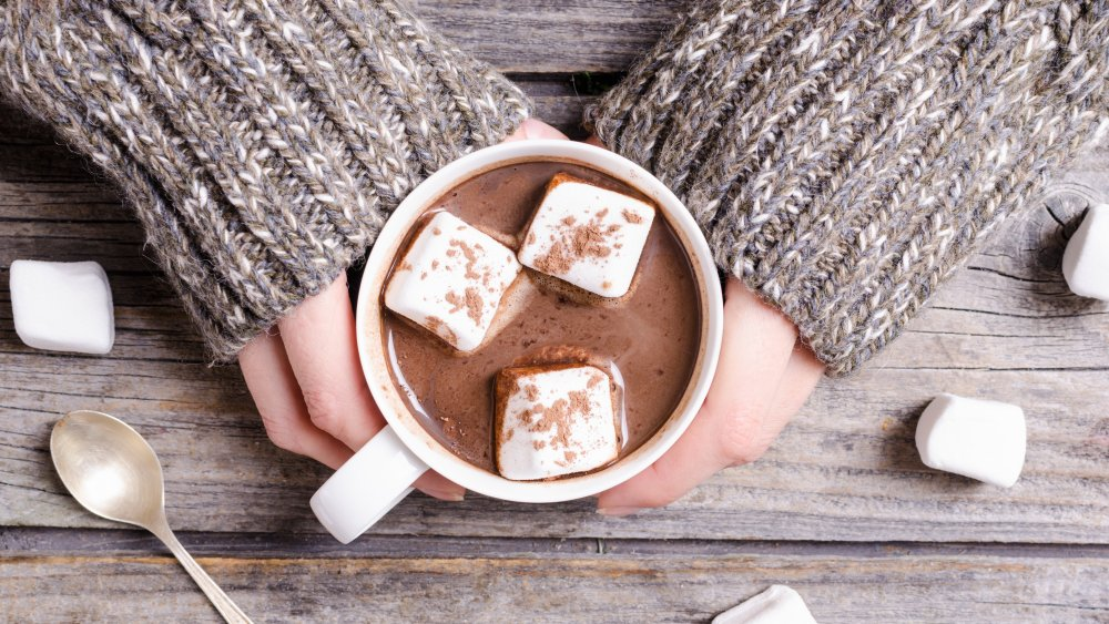Hands holding a cup of hot chocolate with marshmallows