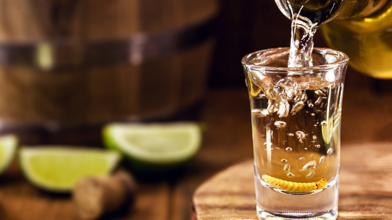 Tequila in a shot glass with worm