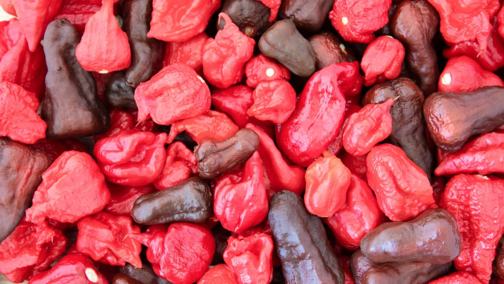 Collection of spicy peppers