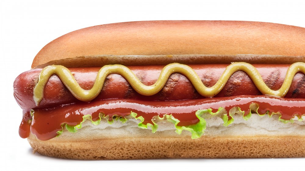 Hot dog with all the toppings