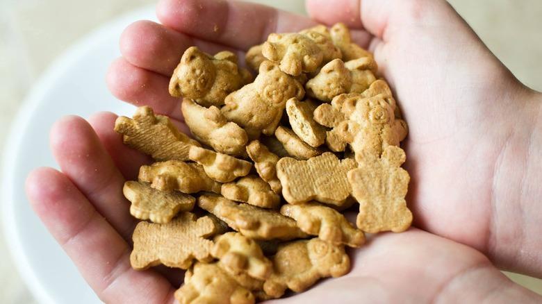 Hands holding Teddy Grahams cookies