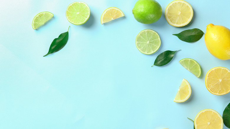lemons and limes against a light blue background