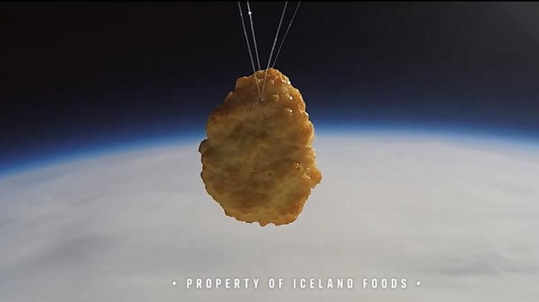 Chicken nugget in space