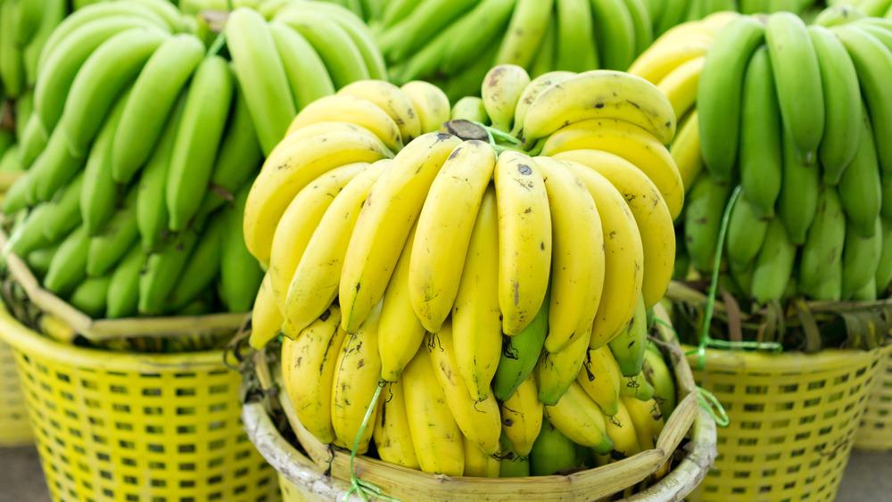 Yellow and green bananas