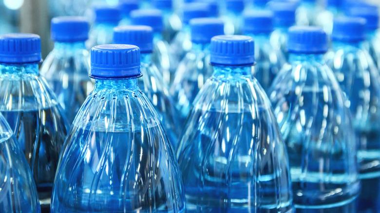 Rows of plastic water bottles