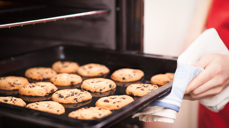 Person pulling cookies out of the oven