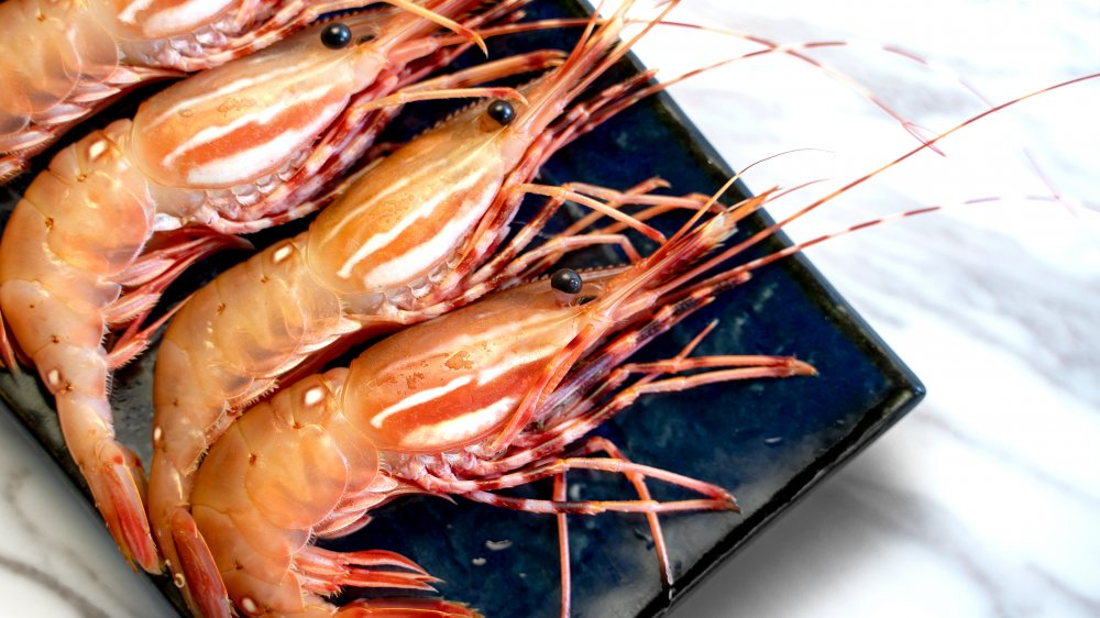 Pink spot prawns on a black plate with heads, legs, and antennae.