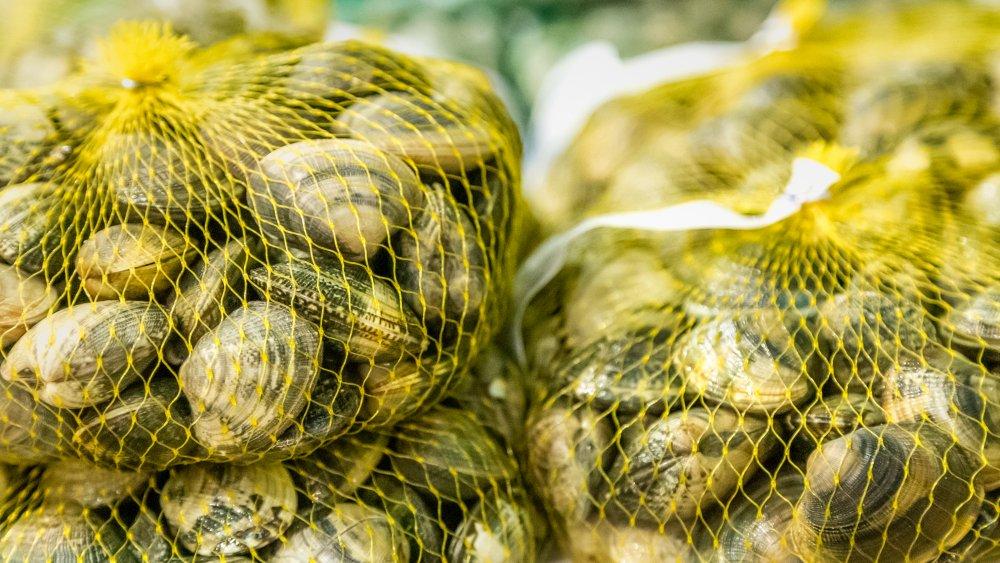 Closeup of bags of fresh clams
