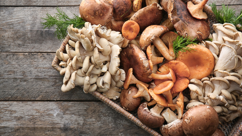 Array of mushrooms in wicker basket
