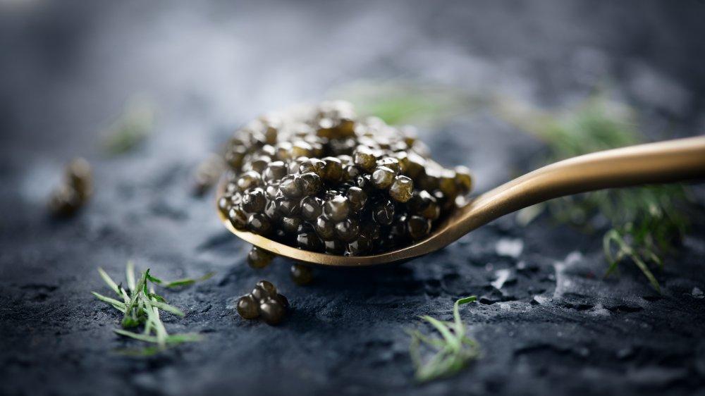 Sturgeon caviar in a spoon