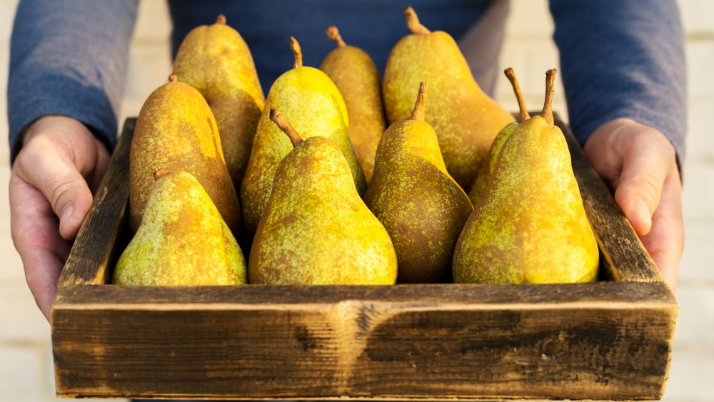 fresh pears being presented in a wooden tray