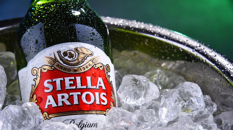 Close of a bottle of Stella Artois bottle on ice