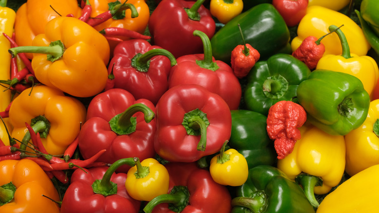 A variety of bell peppers