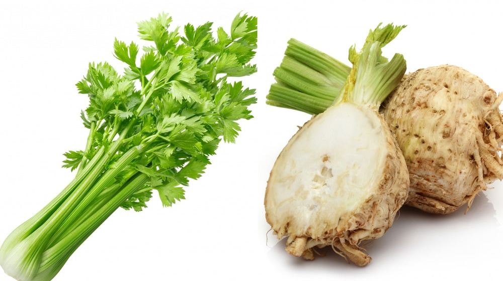 Split image with celery on the left and celeriac on the right