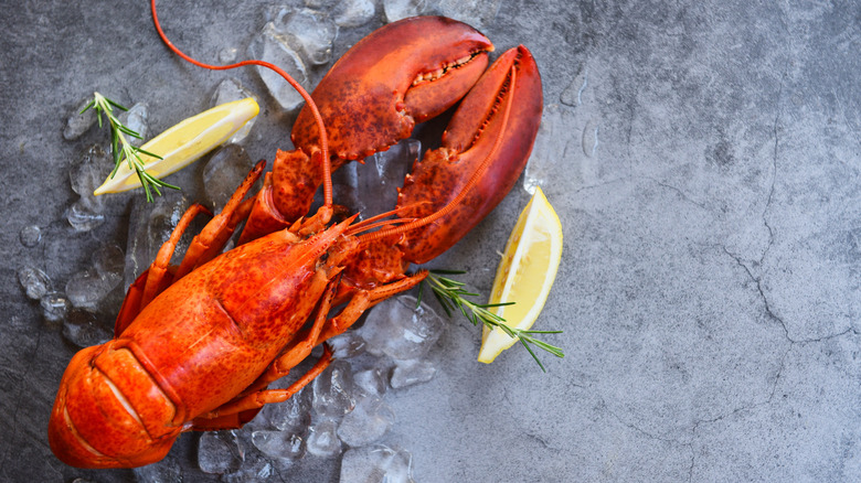 Lobster with lemon on table