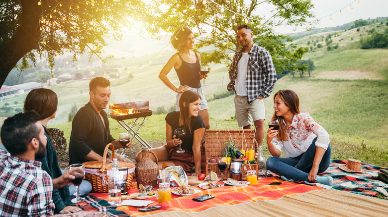 Group of friends having picnic in park