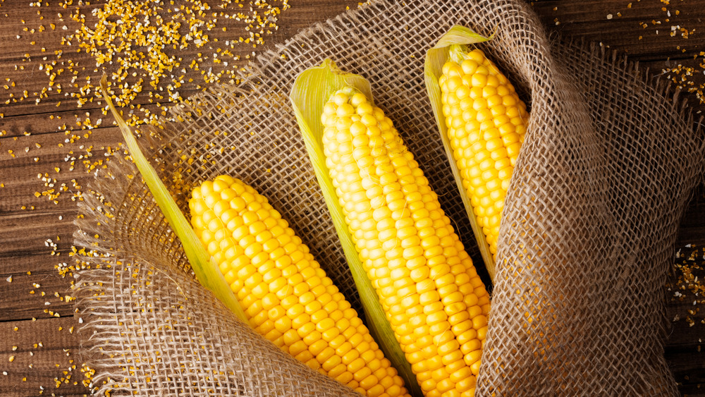 Husked corn on a table