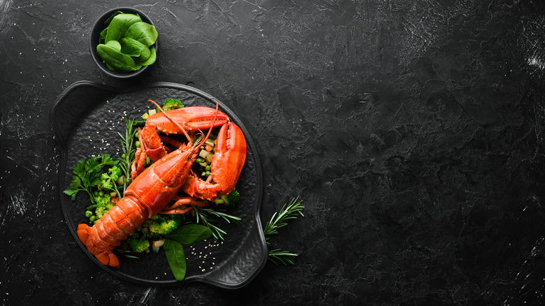 Lobster on plate with herbs and lettuce