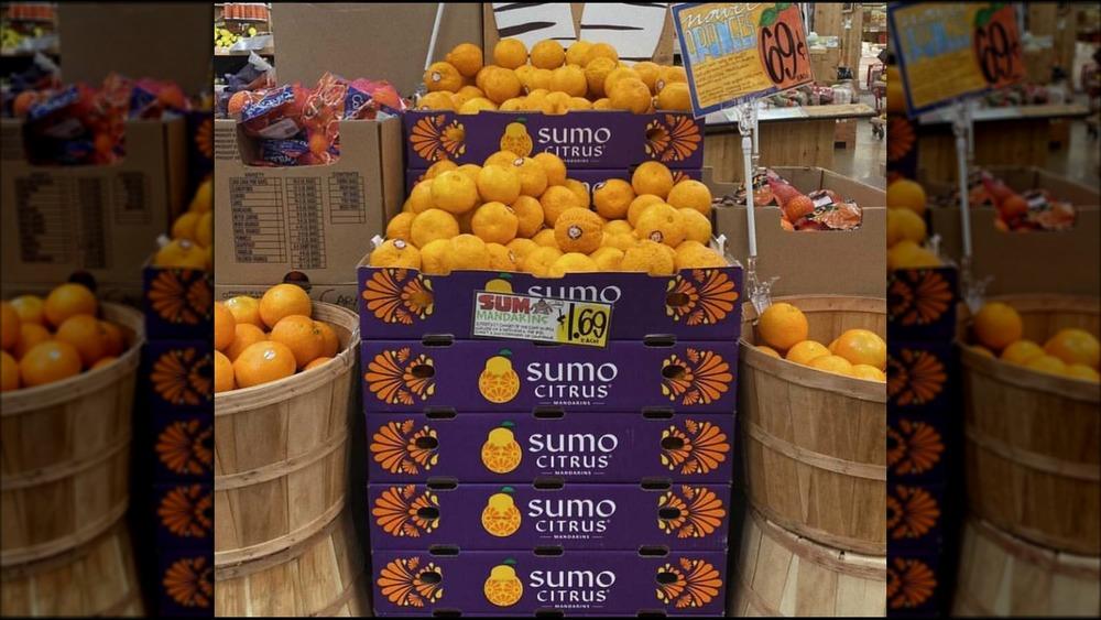 Boxes of Trader Joe's Sumo oranges