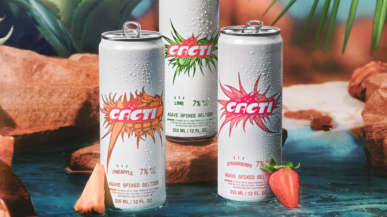 Cacti cans with fruit slices