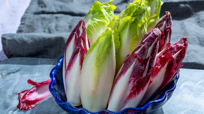 Radicchio and Belgian endive in a blue bowl