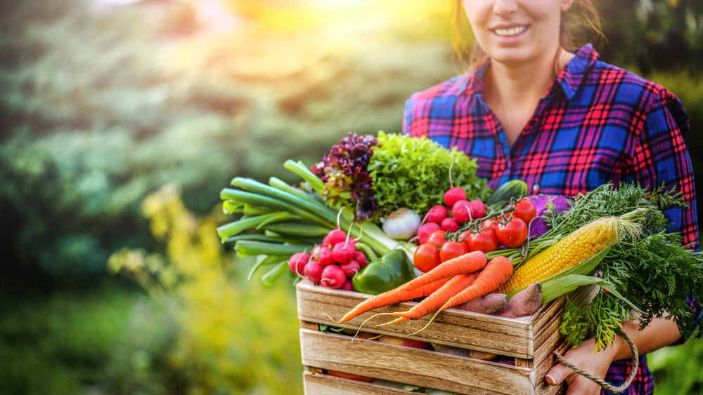 woman in plaid shirt holding wooden crate full of vegetables