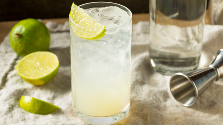 Gin Rickey on a piece of fabric