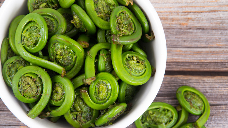 Bowl of prepared fiddleheads in a white bowl on a wood background