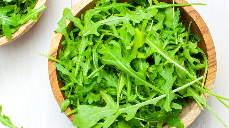 Fresh arugula greens
