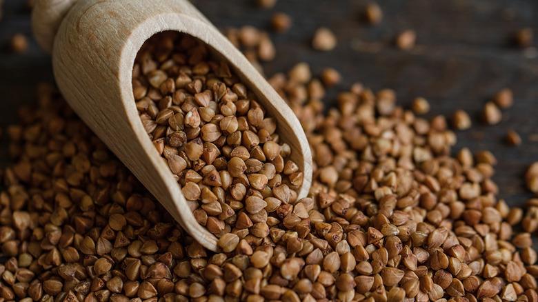 A scoop of buckwheat groats