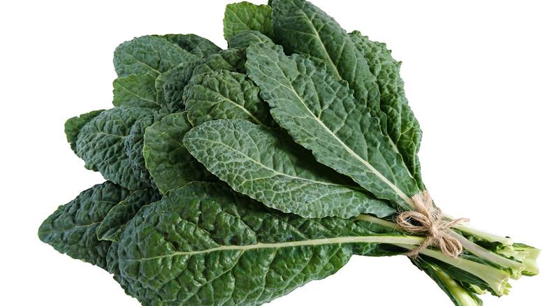 bunch of lacinato kale
