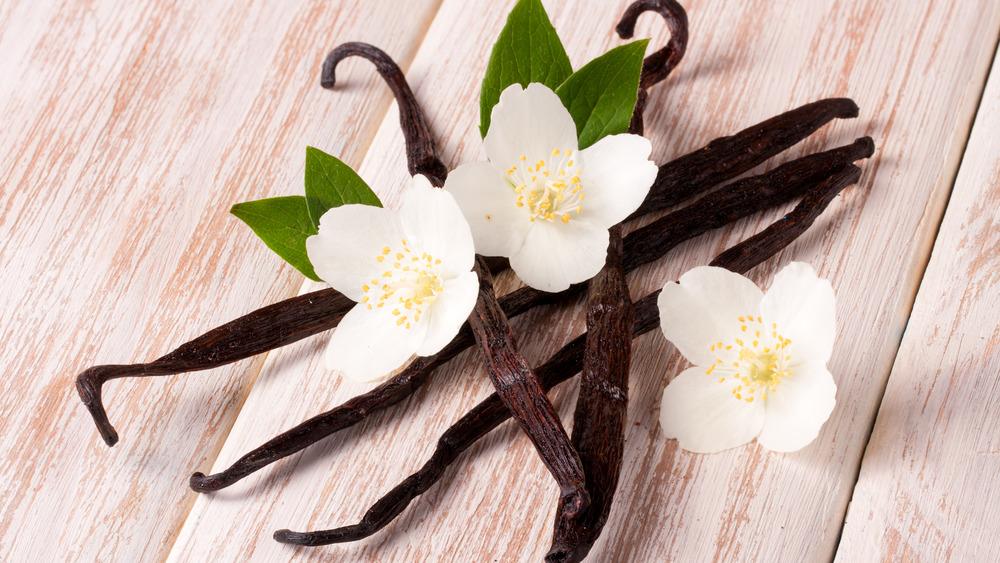 Vanilla bean with white flowers