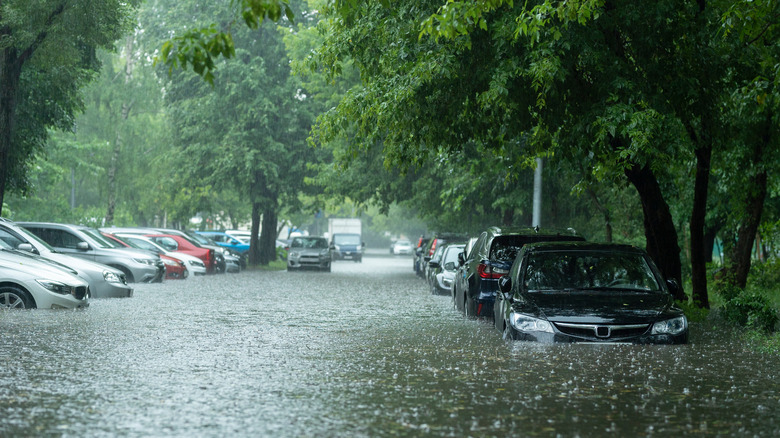 Cars parked in flood waters