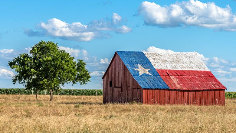 Farmhouse in Texas with flag