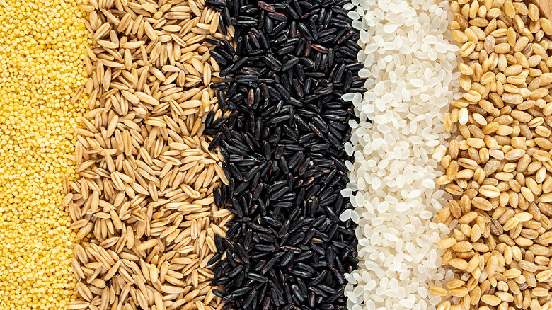 Variety of grains including black rice