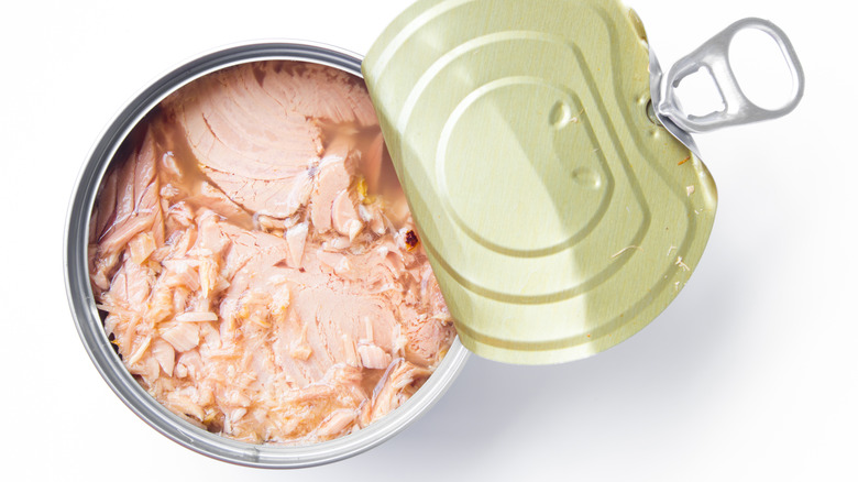 what you should know about tuna
