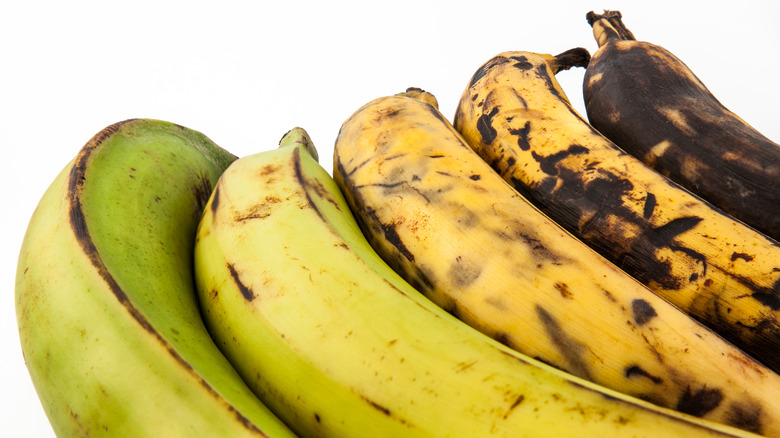 plantains at different ripeness