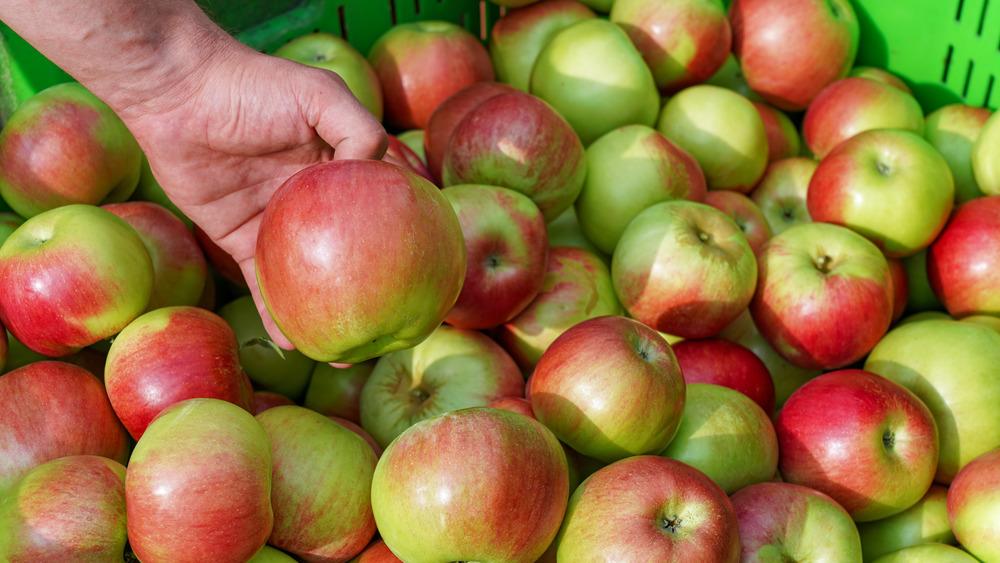 Hand picking up an apple