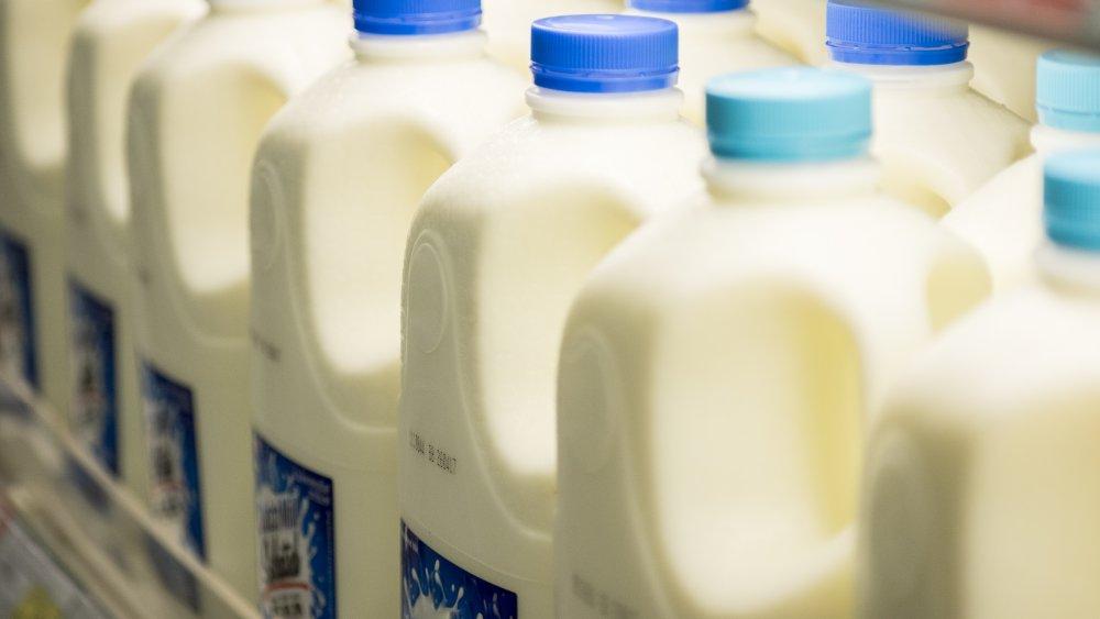 Row of milk in the refrigerator