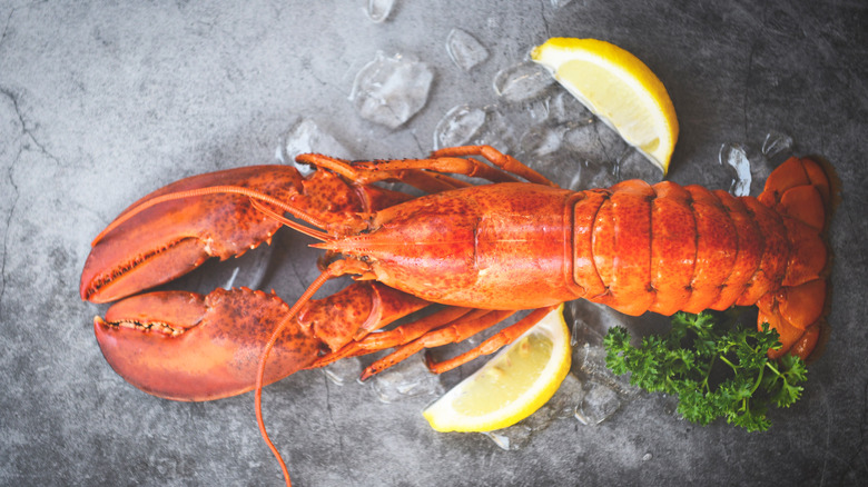 Lobster served whole with lemon