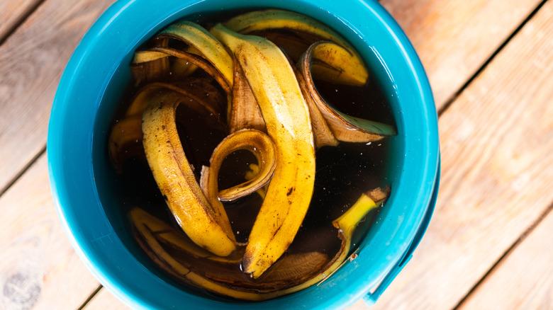 Banana peels soaking in water